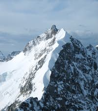 Bianco grat to Bernina