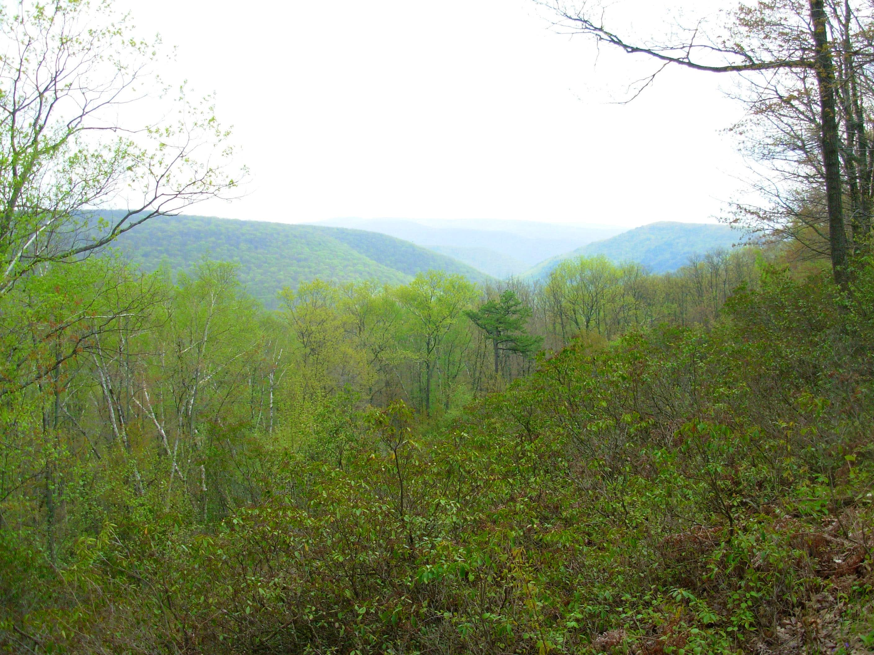 Hemlock Mountain