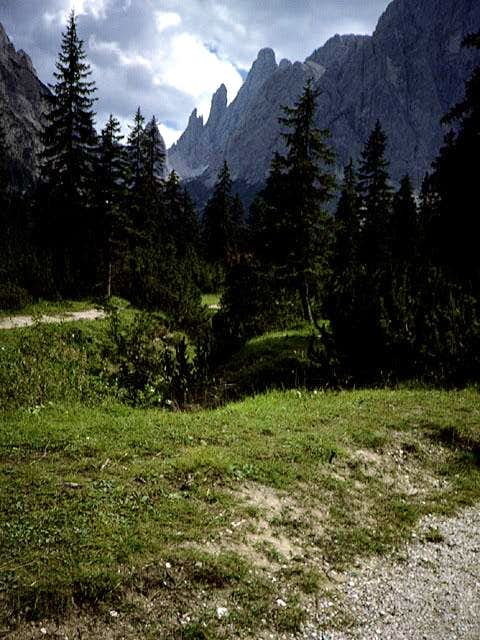 along the Val Fiscalina