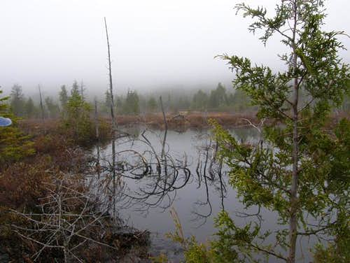 Redfield\'s Pond Under Cloud Cover