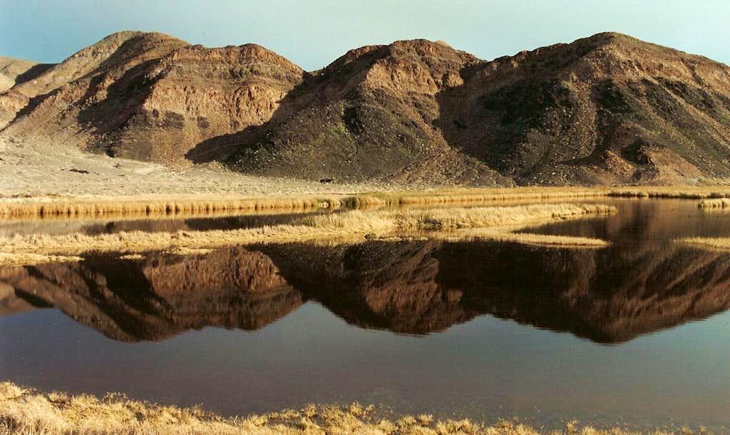 Desert Reflections at Saratoga Spring