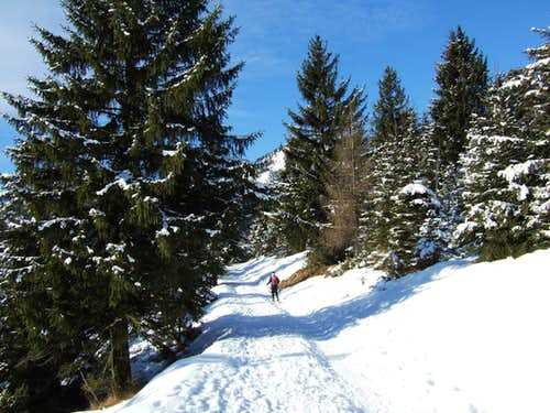Towards Cassinelli hut