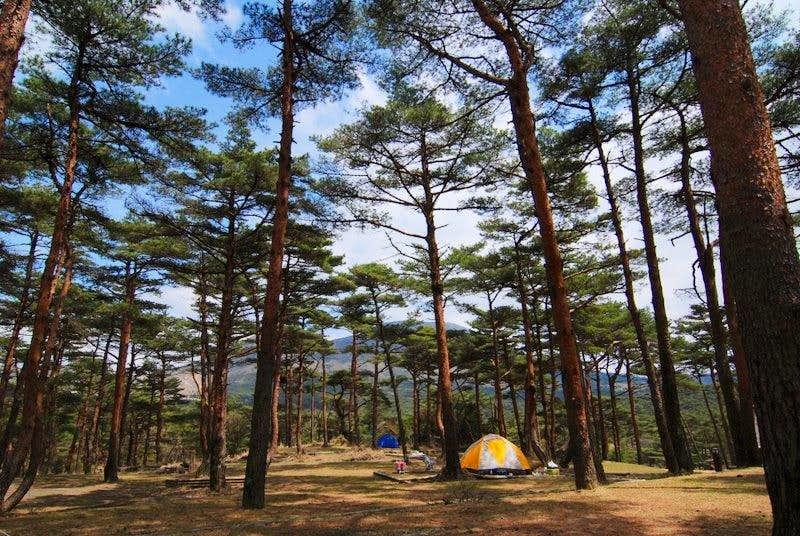 Campground at Ebino Kogen