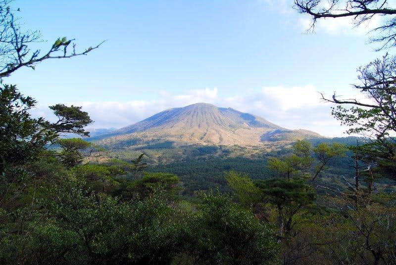 Karakuni from a climb to Koshiki-dake