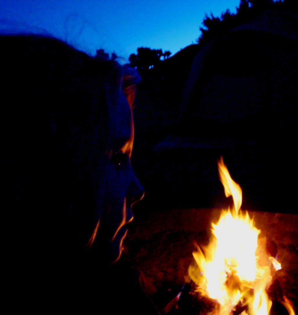 Jtree camping