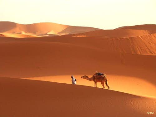 Dunes of Erg Chebbi (april...