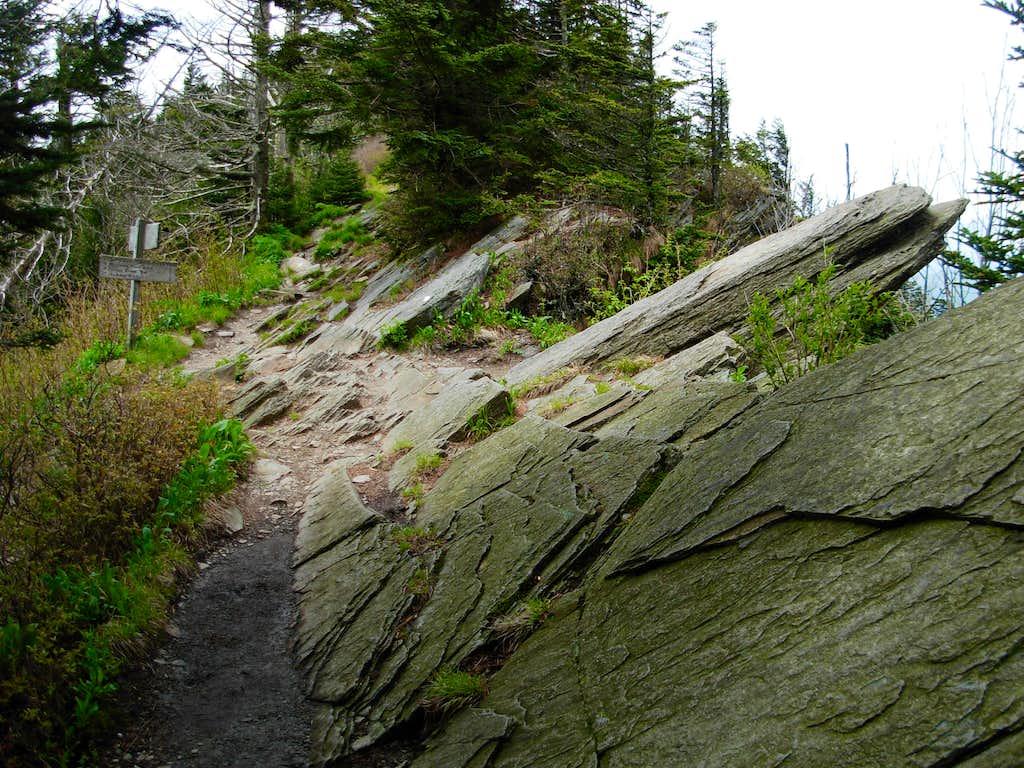 Mount Buckley
