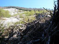 Slide and Debris