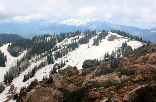 Lightning Ridge