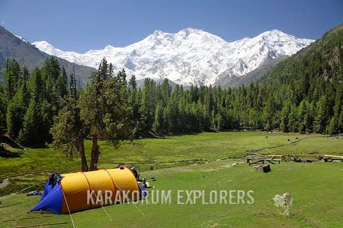View of Nanga Parbat from Fairy Meadows