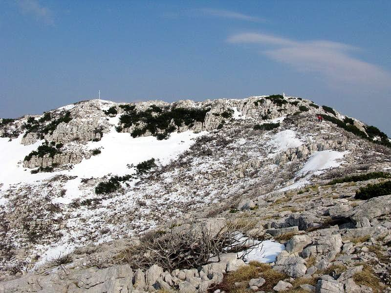Dinara summit (1.831 mtrs)