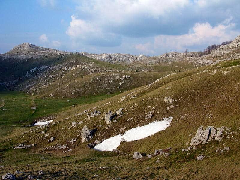 Dinara grassland