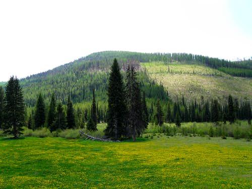 Ingalls Mountain