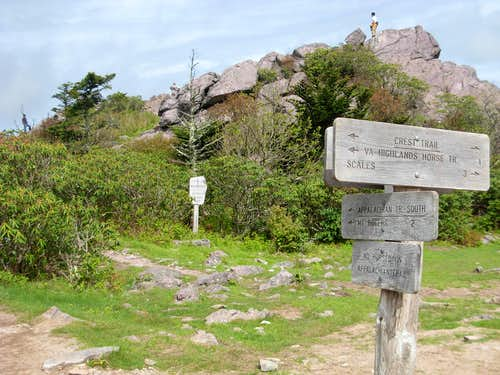Trail Junction Along Mount Rogers Route