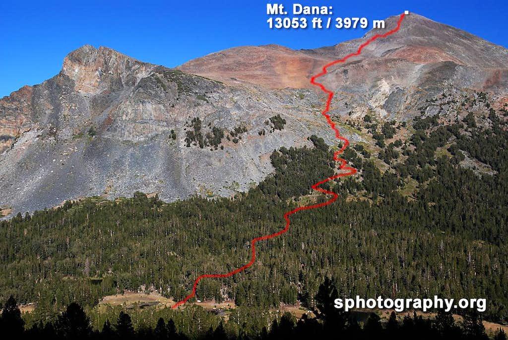 Mt. Dana dayhike route from Gaylor Peak