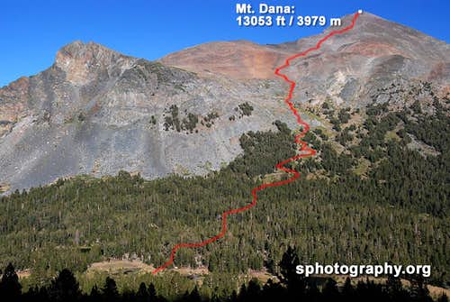 Mt. Dana dayhike route from Gaylor Peak