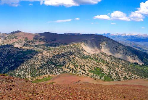 White Mountain from Sonora Peak