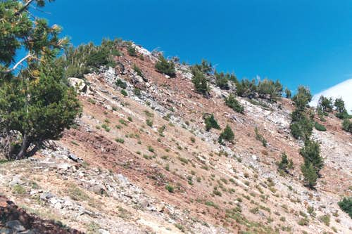The Summit and Upper Southeast Slope