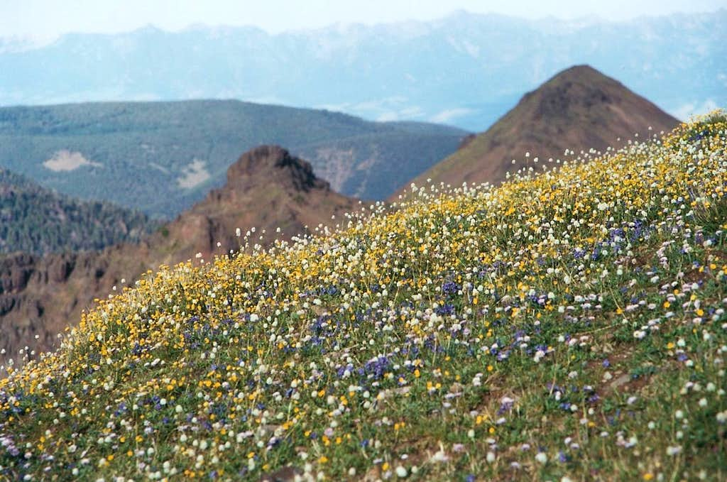 Hyalite Peak Summit View