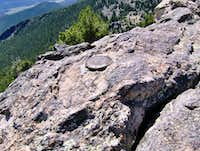 Twin Sisters Summit Marker