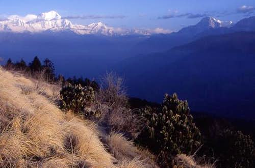 Poon Hill in foreground with...