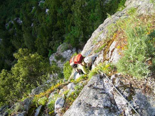 Approach to Steck-Salathe'