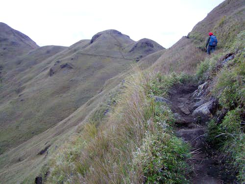 The trail near the peak of Pulag