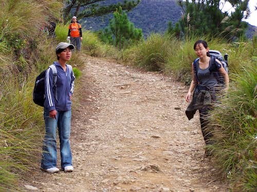 The trail between the ranger's house and Campsite 1 - Pulag