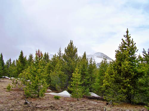 Southward Toward Red Mountain