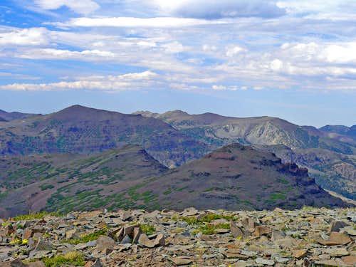 Sonora Peak and White Mtn. from Leavitt Peak