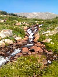 Waterfall near Mt. Bancroft