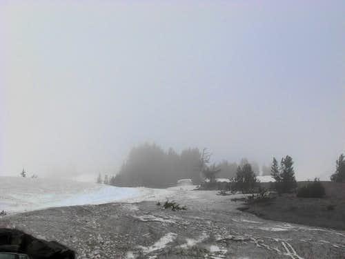 Mount Hood Whiteout