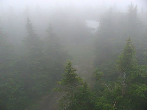 View from fire tower in thick fog