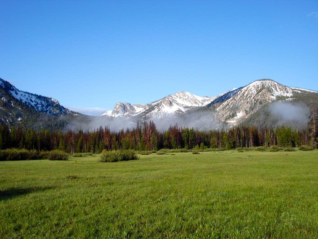 Peak 9115 Meadow 01