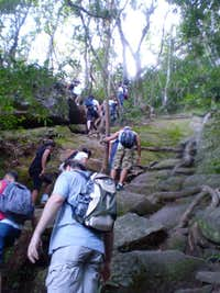 Pedra da Gávea Trail