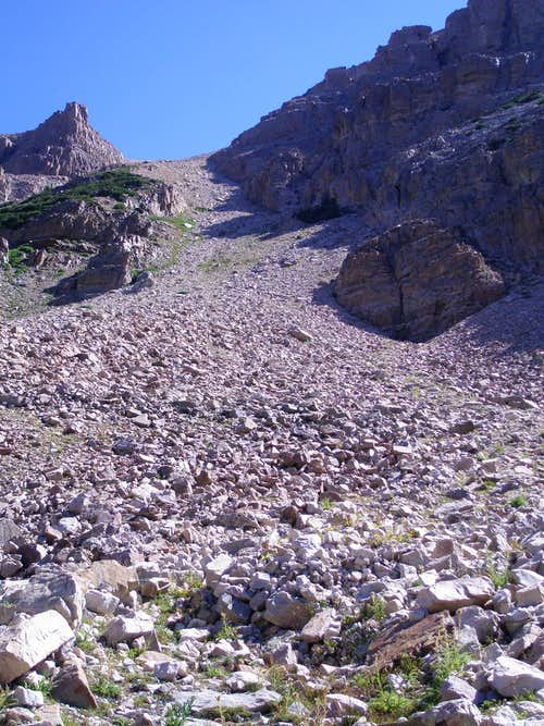 Bottom half of scree slope