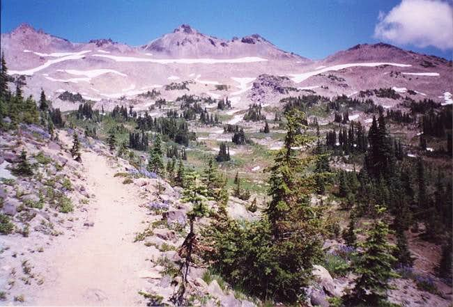 Old Snowy-Ives Peak