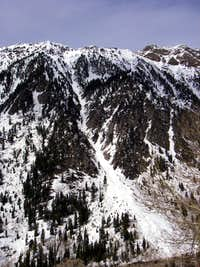 The Limber Pine Couloir