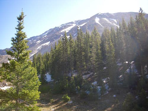 Before leaving treeline of Horn Fork Basin