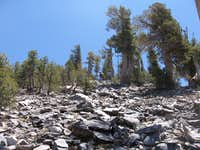 San Gorgonio 11 Peak Loop