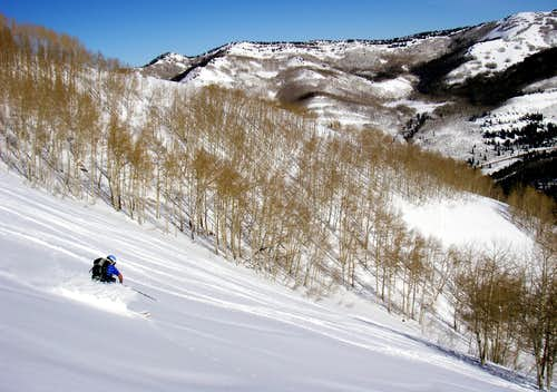 Skiing Silver Fork