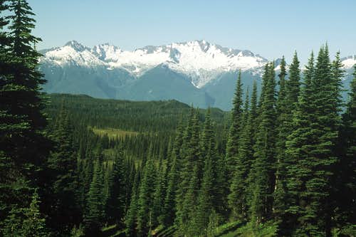 The Tantalus Range from above Taylor Meadows