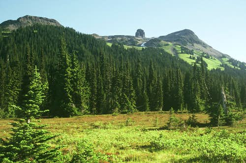 The Black Tusk is the tiny thimble as seen from Taylor Meadows