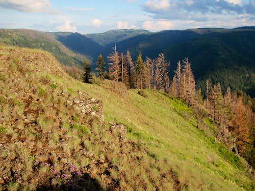Wenaha-Tucannon Long-distance hiking