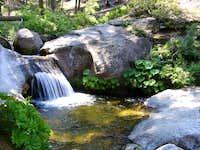 Sequoia Creek