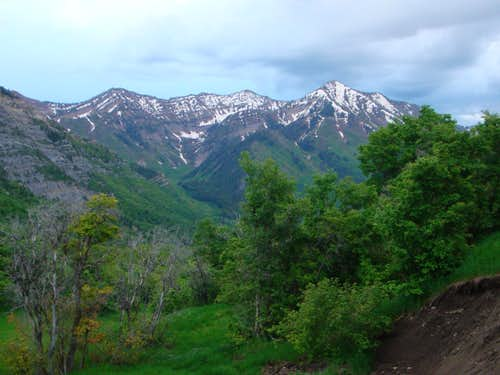 Provo Peak and it\'s Neighbors