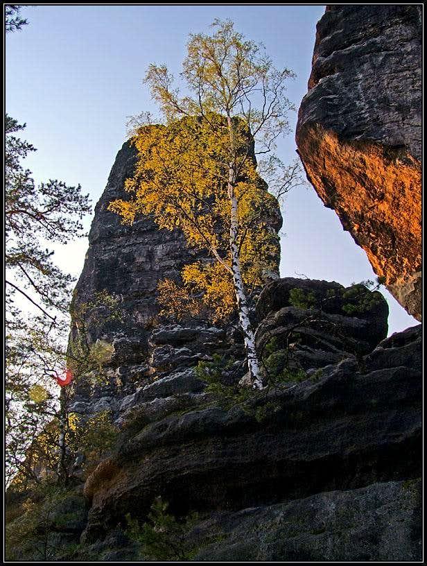 Spring near Pravicicka Brana - Prebischkegel