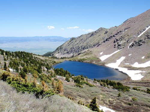 Comanche Venable Loop