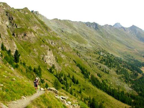 The path close to the Portola...