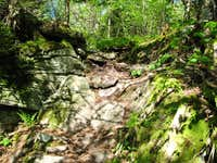 Wittenberg, Cornell Slide trail from the